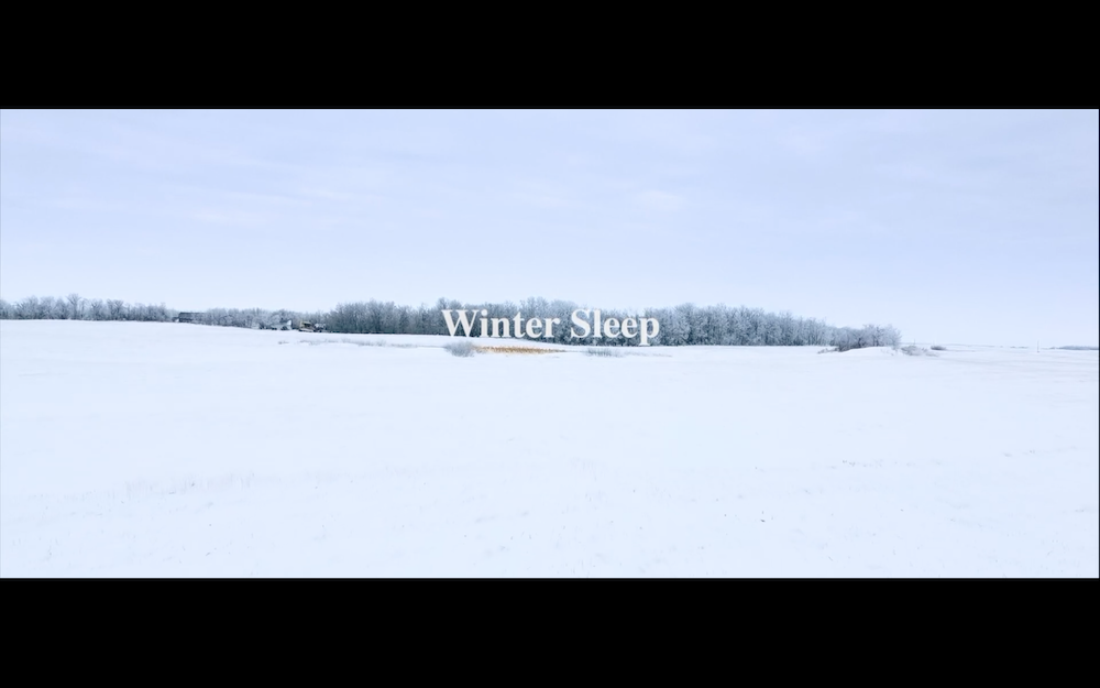"Sheri Benning's ""Winter Sleep"""