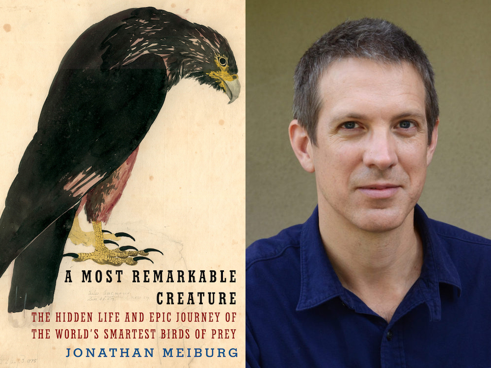 At Home among the Birds: An Interview with Jonathan Meiburg
