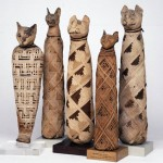 The Animal Mummies Wish to Thank the Following