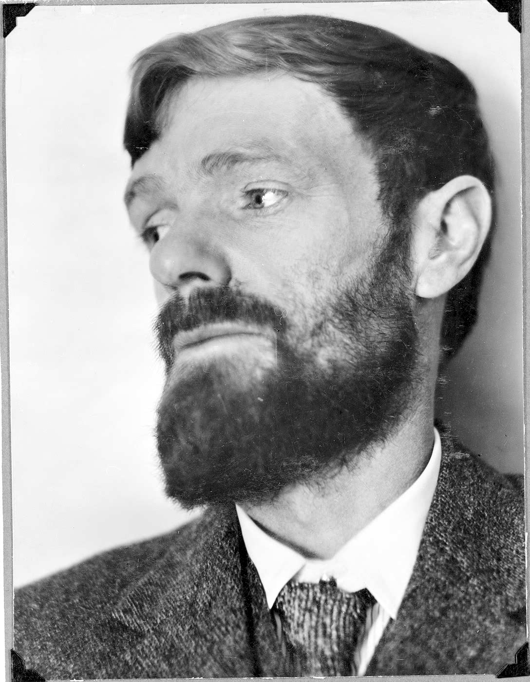 D. H. Lawrence photo #5420, D. H. Lawrence image