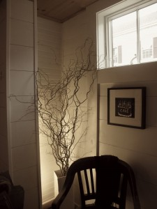 curlywillow