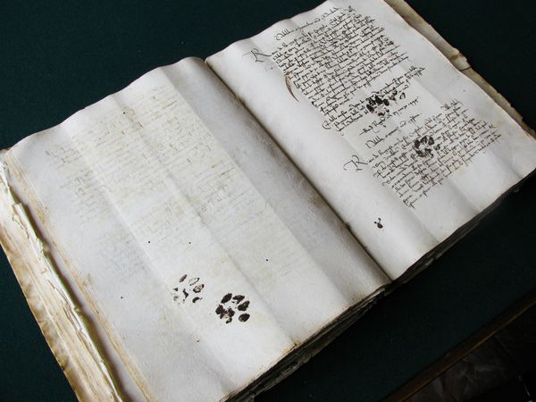 medieval-manuscript-cat-paw-prints_65668_600x450