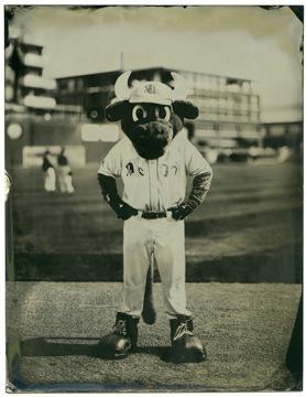 Durham Bulls mascot Wool E. Bull. Wet-plate tintype by Leah Sobsey/Tim Telkamp.