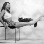 <em>Catflexing: The Catlover's Guide to Weight Training Aerobics and Stretching</em>