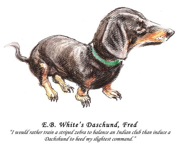 Microsoft Word - Literary Pets.docx