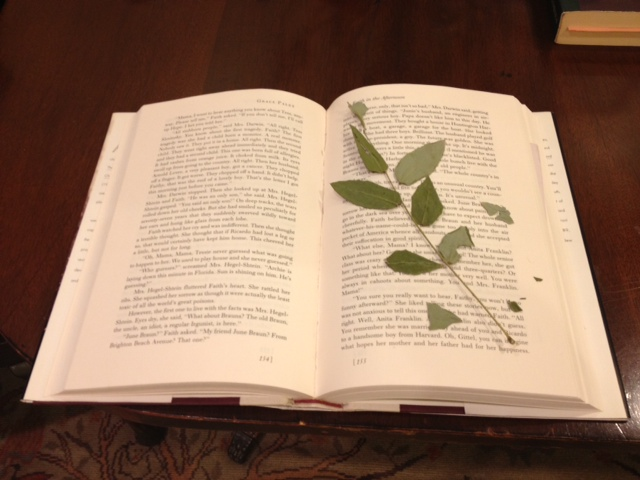 Loyd.leaves&books