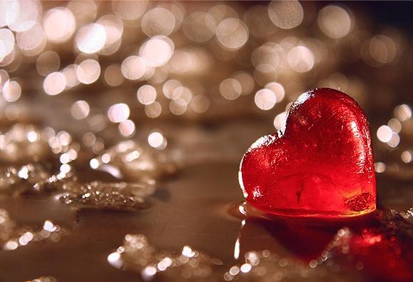 heart seyed mostafa zamani