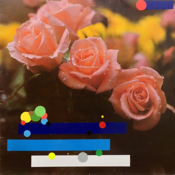 FlowersThreeRoses