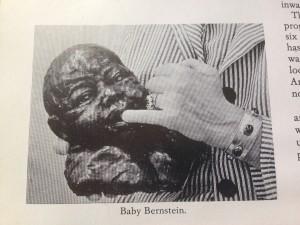 baby bernstein