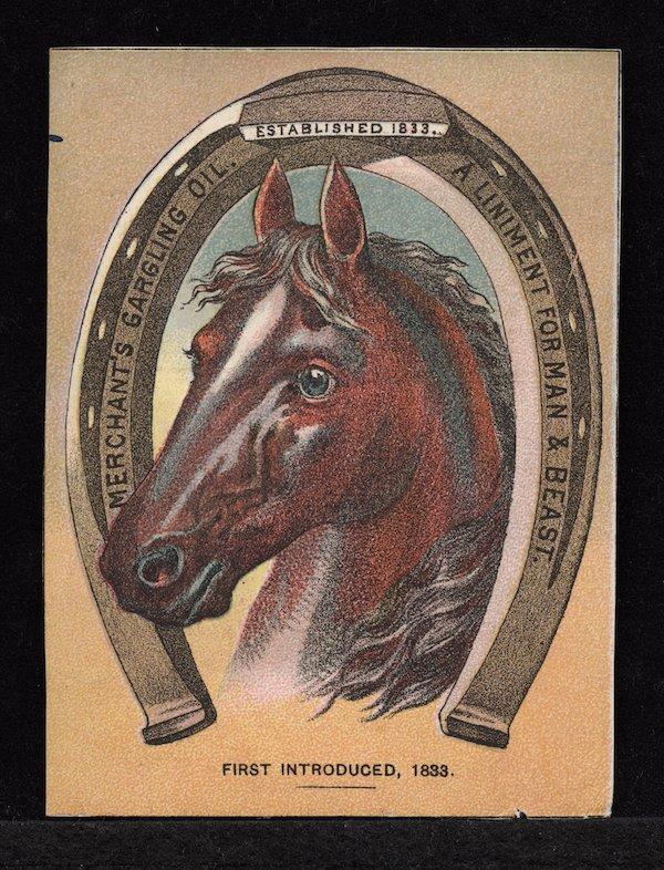 horse merchant oil