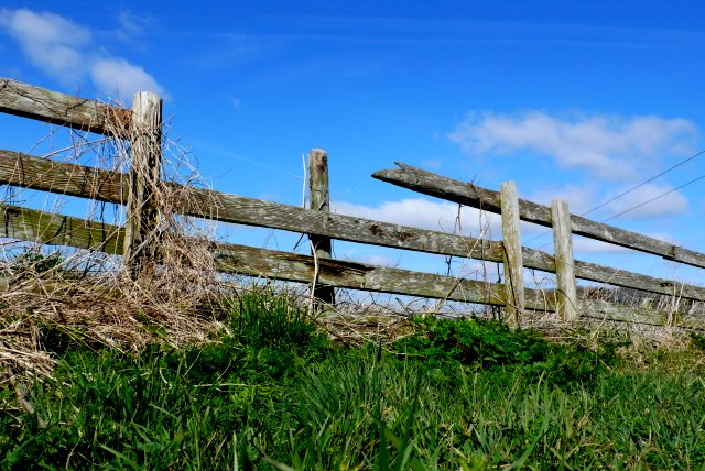 Broken_Fence_on_White_Hill_-_geograph.org.uk_-_1218674
