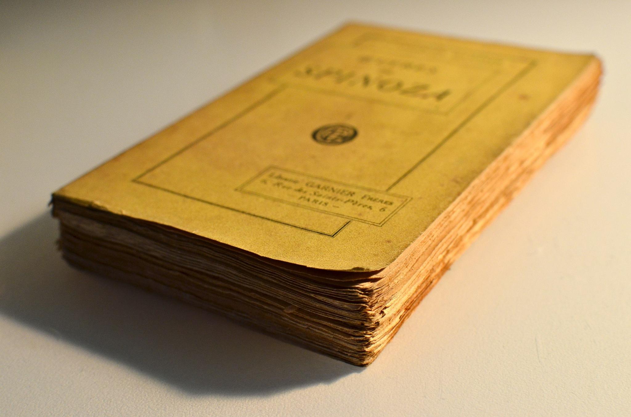 spinozabook