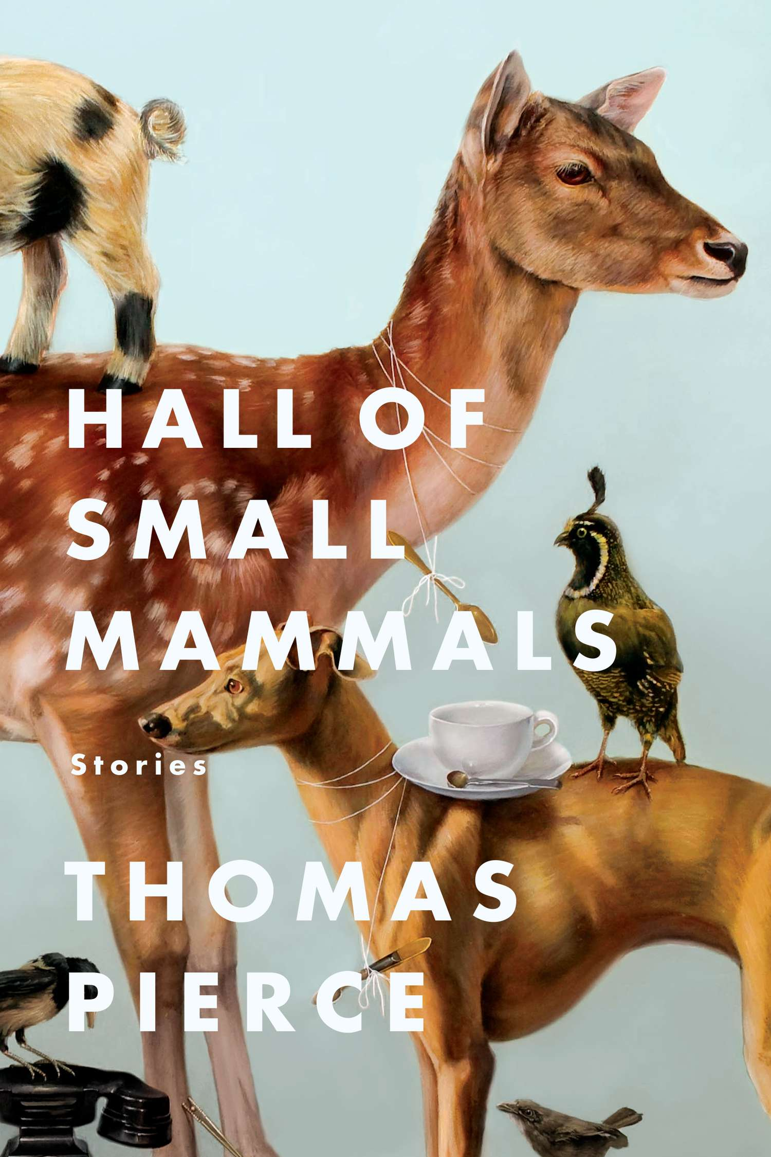 Hall_of_Small_Mammals