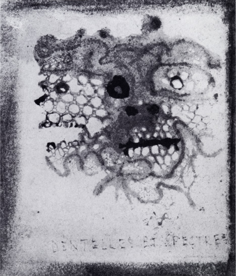Victor_Hugo-Lace_and_Ghosts-c_1855-6-Wash_(lace_imprint)_and_ink-6.5x6cm-Maison_de_Victor_Hugo_Paris