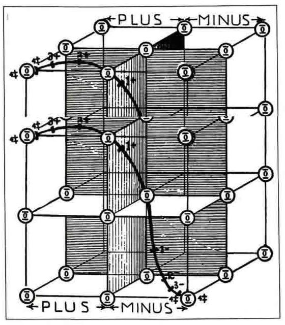Inscrutable But Beautifulwalter Russells New Age Diagrams
