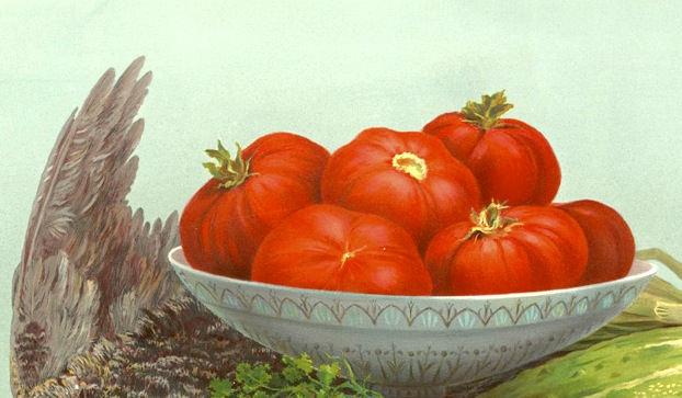 Trout,_Grouse,_Tomatoes_(Boston_Public_Library)