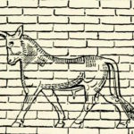 Pet Brick