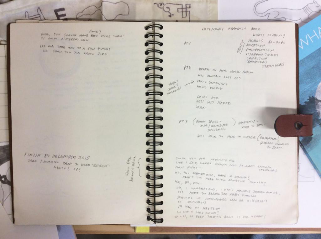 Koch-Notebook