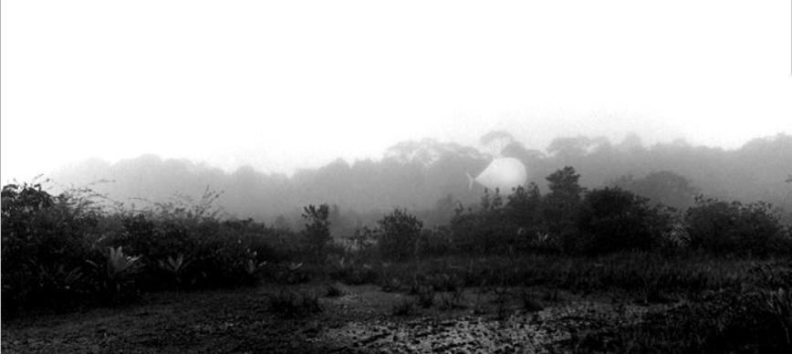 Lena Herzog, Airship, morning over the jungle, 2004.