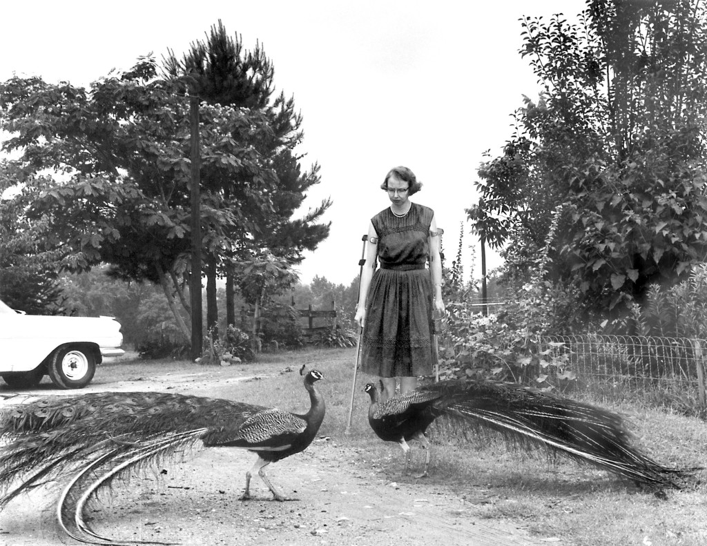 Joe McTyre/ Atlanta Constitution, Flannery O'Connor in the driveway at Andalusia, 1962.