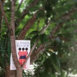 #ReadEverywhere, Even in the Trees