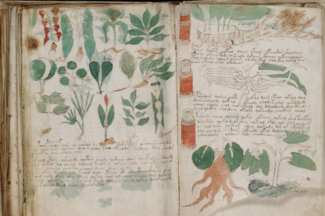 Pages from The Voynich Manuscript.