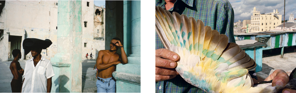 The Rhyming Photographs of Rebecca Norris Webb and Alex Webb