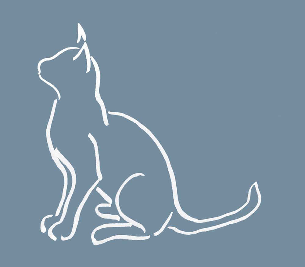 Good ideas for a descriptive essay on cats