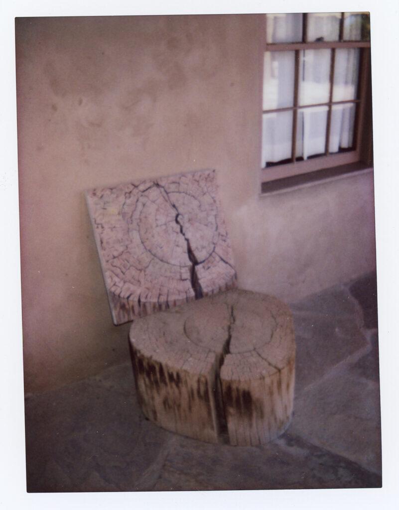 painting-stump-in-situ-1-801x1024.jpeg