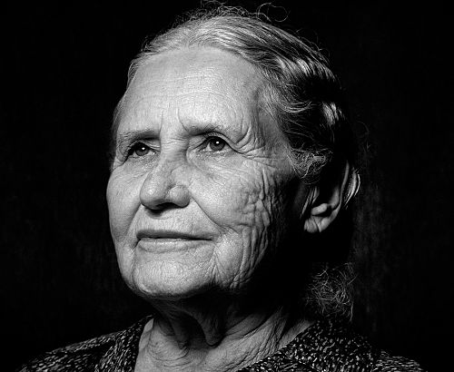 doris lessings book character essay Free essay: a feminist reading of doris lessing's 'to room nineteen' and different ways by describing the main character of the book in 1886 as a child.